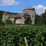 ブルゴーニュ・ワインの今後の動向